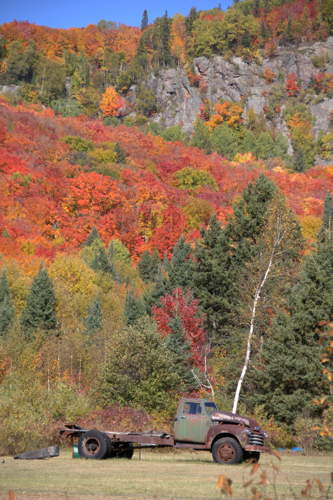 Fall Colours in the Searchmont Valley with an old chevy truck in the foreground.